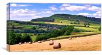 """Hay Bales in the Dales"", Canvas Print"
