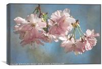 """Antique blossoms"", Canvas Print"