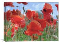 """Arty Poppies"", Canvas Print"