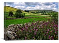 """Thistles in the hedgerows of Littondale"", Canvas Print"