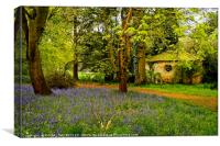 """""""Little Arbour  in the Bluebell wood"""", Canvas Print"""