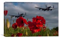 Lancaster Bombers over Poppy Field, Canvas Print