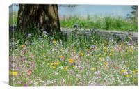 Meadow Flowers, Canvas Print