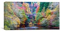 Autumn Colours over the River Foyers, Canvas Print