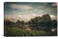 Narew River, Canvas Print