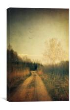 Flying home #3, Canvas Print