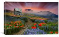 Colours are brighter when the mind is open. (Adria, Canvas Print