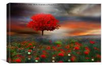 The little Red Tree , Canvas Print