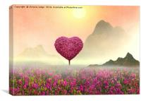 the Little pink heart tree , Canvas Print