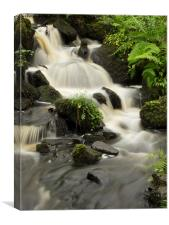 Mull Waterfall, Canvas Print