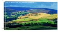 Hills of Llandrindod Wells, Canvas Print