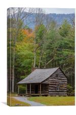 Cabin in the Woods, Canvas Print