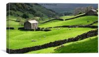 Evening light at Angram in Swaledale, Canvas Print
