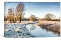 Frosty Morning at Costa Beck, Canvas Print