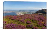 Views from Conwy Mountain, Canvas Print