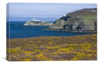 View to South Stack, Canvas Print