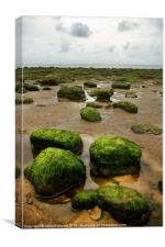 Carstone Rocks, Hunstanton beach, Norfolk, Canvas Print