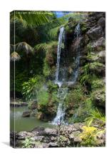 Pigeon Point Falls, Tobago, Canvas Print