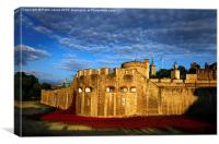 Tower of London Great War Poppy Commemoration, Canvas Print