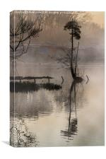 Grand Union Canal dawn, Canvas Print