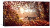 A beautiful autumn day at Hartsholme, Lincoln, Canvas Print