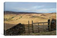 Gate with a view - on Shap Fell, Cumbria... , Canvas Print