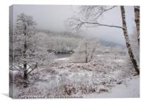 Winter In Perthshire         , Canvas Print