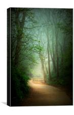 Mysterious Path , Canvas Print