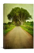 Country Road, Canvas Print