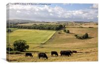 Cissbury Ring, The South Downs, Canvas Print