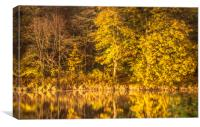 River Reflections............., Canvas Print