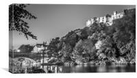 Night by the River in Mono, Canvas Print