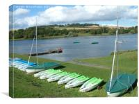 Linlithgow  Loch in the summer, Canvas Print