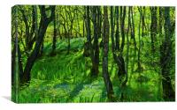 Bluebell woods at Pirnmill, Isle of Arran, Canvas Print