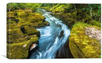 The Strid, River Wharfe, Yorkshire, Canvas Print