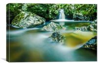 Wood of Cree waterfall, Dumfries and Galloway, Canvas Print