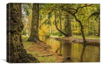 Blackwater,Rhinefield Ornamental Drive,New Forest, Canvas Print