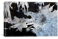 River Ice Crystals , Canvas Print