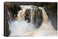 High Force in Flood , Canvas Print