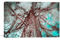 Infrared Tree, Canvas Print