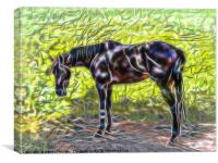 Abstract horse standing in paddock, Canvas Print