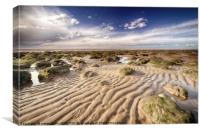 Golden sand lines and seaweed rocks of Norfolk, Canvas Print