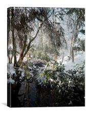 Burn in the snow., Canvas Print