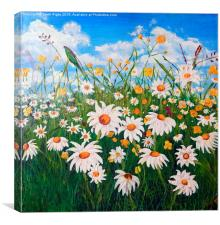 Daisies in the Meadow, Canvas Print