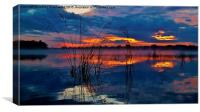 Blue sunrise with reeds, Canvas Print