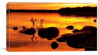 Sunset in gold, Canvas Print