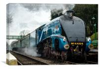 Locomotive 4464 Bittern at Medstead Station on the Watercress line, Canvas Print