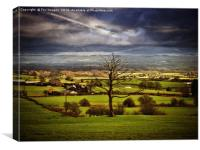 countryside view, Canvas Print