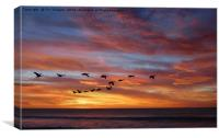 sunset birds, Canvas Print