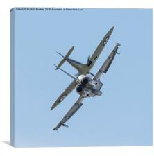SYNCHRO  PAIR , Canvas Print